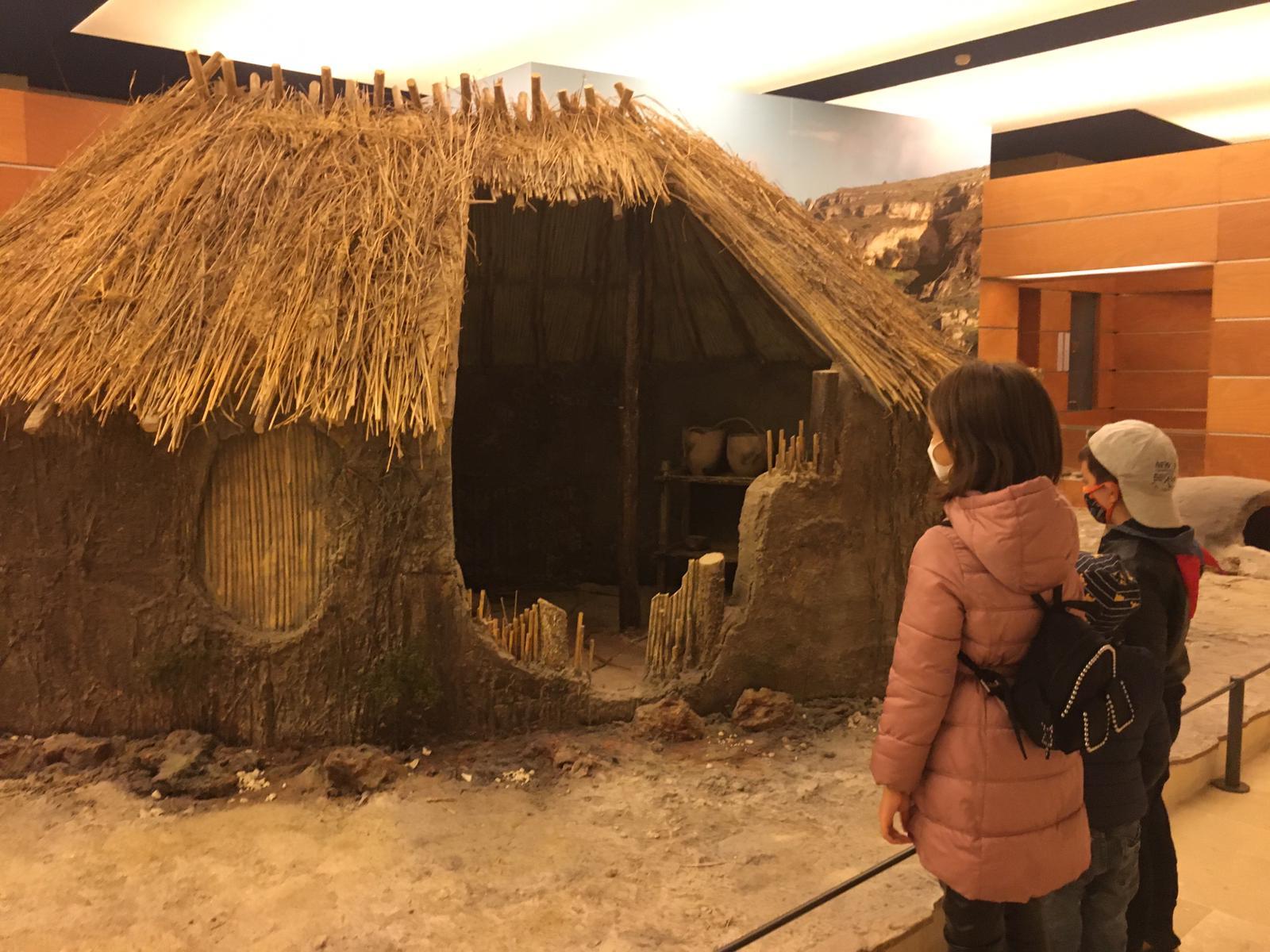Read more about the article Alla scoperta della Preistoria nel Museo Ridola