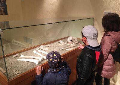 Lo scheletro risalente al Neolitico esposto al Museo Ridola