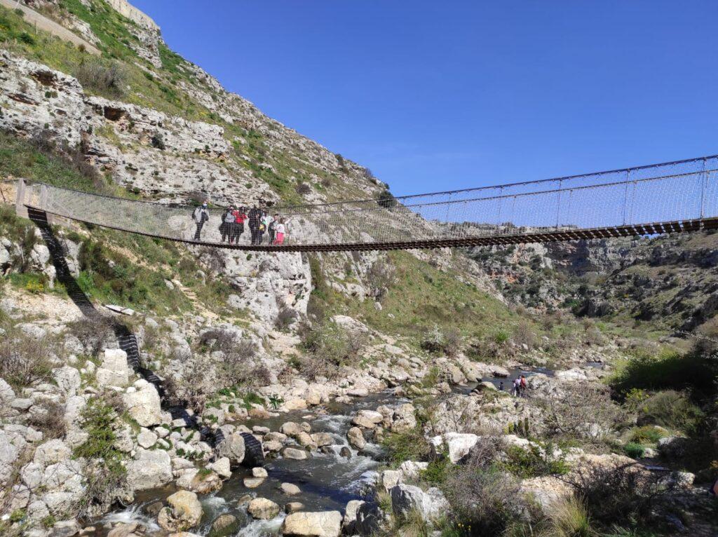 Escursione al Ponte Tibetano